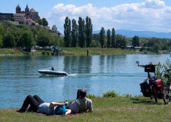 Vue de l'île du Rhin sur Breisach am Rhein