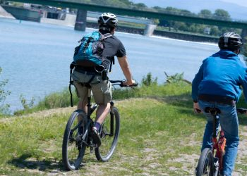 Vélo le long du Rhin